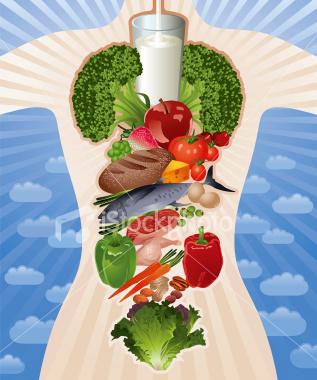 Vpliv hrane na Telo